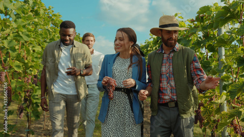 Vászonkép Group of beauty fashion friends walking with farmer on wine tour through gorgeous grapevine garden talking enjoying summertime at vineyard