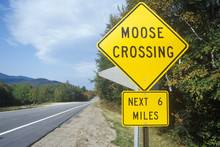 A Sign For Moose Crossing