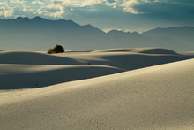 Flowing Shapes Of Sand Dunes F...