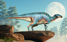 Maiasaura, A Hadrosaur, On Cliff In Front Of The Full Moon. This Duck Billed Dinosaur, Now Extinct, Was An Herbivore That Lived During The Cretaceous Period. 3D Rendering.