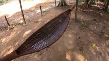 Footage Swing Hanging Hammock On Jungle
