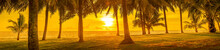 Panorama Of A Tropical Landsca...