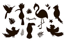 Vector Cute Exotic Birds, Leaves, Flowers Silhouettes Isolated On White Background. Funny Tropical Animals And Plants Illustration. Jungle Summer Stamp Design.