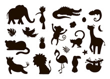 Vector Cute Exotic Animals, Le...