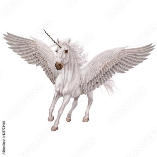 cheval, animal, en vol, volant, licorne, isolé, blanc, noir, étalon, mammifère, Canvas Print