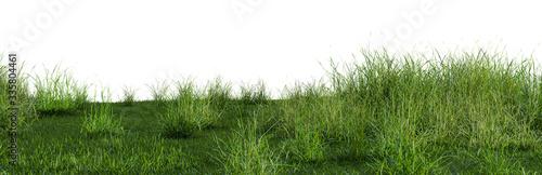 Foto 3D illustration of bush lush on green grass field