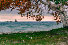 Looking Under A Birch Tree At Round Island Lighthouse From Mackinac Island