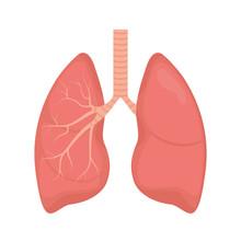 Lung Human Icon, Respiratory S...