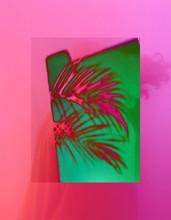 Illustration Of Palm Collage
