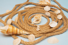 Seashells And Spiral Rope On A Blue Wooden Background.