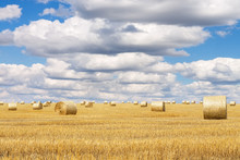 Hay Bales With Blue Cloudy Sky