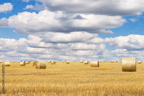 Hay bales with blue cloudy sky Wallpaper Mural