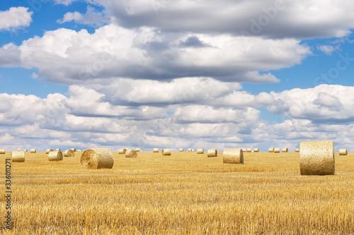 Fototapeta Hay bales with blue cloudy sky