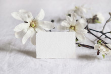 Wedding Stationery Mock-up Scene. Blank Greeting Business, RSVP Paper Card On Linen Tablecloth Background With Bloomimg White Star Magnolia Tree Branches. Feminine Still Life Composition.