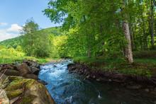 Beautiful Landscape Of Rapid M...