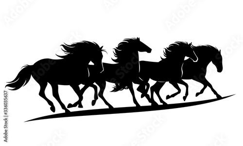 Fototapeta herd of wild mustang horses rushing forward - black vector silhouette outlines of running animals group obraz