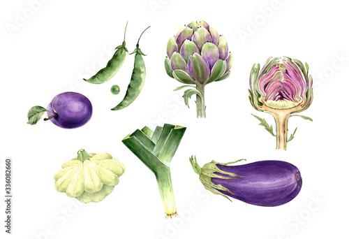 set of illustrations with vegetables and fruits, artichoke plants, leek eggplant Wallpaper Mural