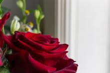 Close-up Of Deep Red Rose