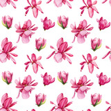 seamless pattern of pink magnolia on an isolated white background, watercolor flowers