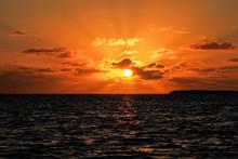 Florida Keys Wildlife And Suns...