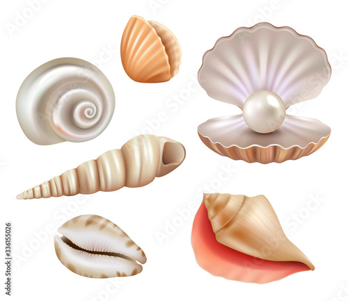 Fototapeta Open seashells. Luxury pearls and marine objects from sea or ocean vector realistic set. Mollusk and shell, seashell with jewelry, precious illustration obraz