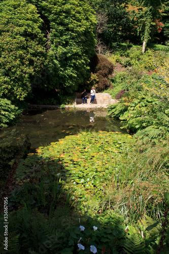 Photo Saltash (England), UK - August 21, 2015: Cotehele park, near Saltash,  Cornwall, England, United Kingdom