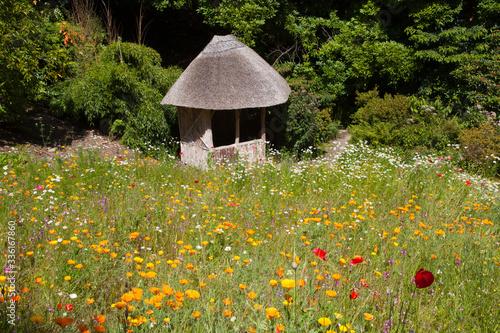 Saltash (England), UK - August 21, 2015: Cotehele park, near Saltash,  Cornwall, England, United Kingdom Canvas Print