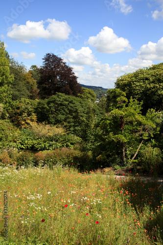 Saltash (England), UK - August 21, 2015: Cotehele park, near Saltash,  Cornwall, England, United Kingdom Wallpaper Mural