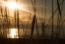Sun Setting Down At Seaside On...