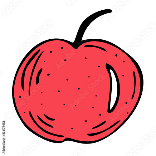 Bright and juicy apple illustration, on a white background. Canvas Print