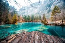 Blausee  - O Lago Mais Azul Da...