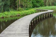 Rural Landscape. Wooden Bridge...