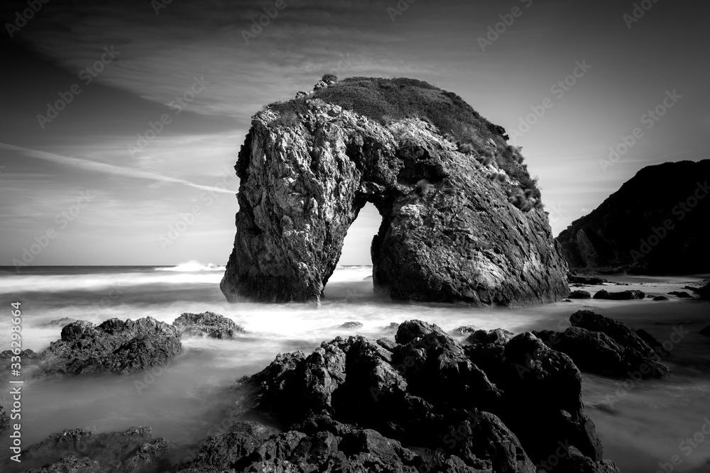 Fototapeta Black and white photo of Horse Head Rock, Bermagui Australia