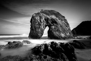 Black and white photo of Horse Head Rock, Bermagui Australia