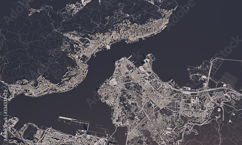Fotografie, Obraz Hong Kong city map 3D Rendering. Aerial satellite view.