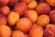 canvas print picture - abricots