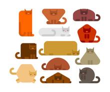 Geometric Cat Set. Square And ...