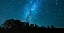 Starry Night Above The Forest Showing The Milky Way