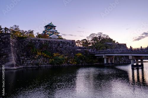 Autumn Leaves with Osaka Castle in Osaka, Japan