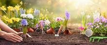 Spring Gardening Works Concept...