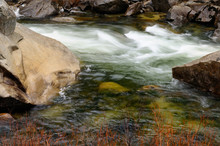 Rapids On The Merced River In Yosemite National Park In A Winter Rain
