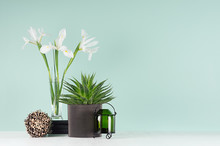 Fresh Home Decor With Green Aloe, Candlestick, Black Books, Spring White Flowers, Decorative Round Sheaf Of Brown Twigs In Style Green Mint Menthe Interior On White Wood Table.