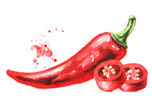 Red Hot Chili Pepper. Hand Drawn Watercolor Illustration  Isolated On White Background