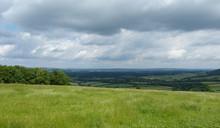 Zielona łąka W Anglii