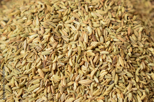 Fototapeta Dried fennel Seeds as an abstract background texture  obraz