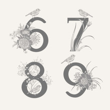 Set Of Decorations With Numera...