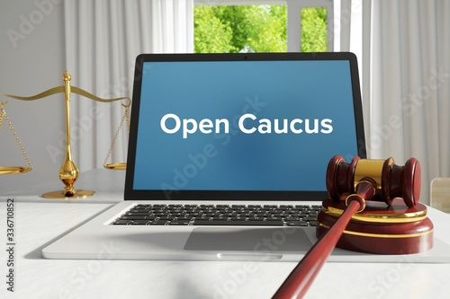 Obraz na plátne Open Caucus – Law, Judgment, Web