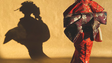 Silhouette Of Japanese Geisha.Shadow From Statuett On Background.Puppet Theater