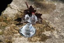 Cristal Shiny Transparent Glass Precious Chicken And Snake
