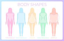 Woman Body Shape Background Il...